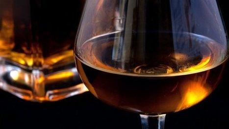Une formation pour découvrir le cognac et sa filière en Charente   Le Cognac et son vignoble   Scoop.it