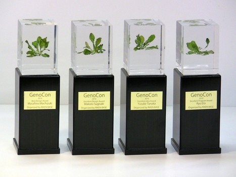 GencoCon Showcases 2010 Award Winners and their Transgenic Arabidopsis Plants | GenoCon 2 | Scoop.it