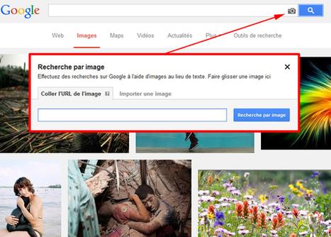 Un Sitemap images pour vérifier l'indexation de vos images | Référencement et visibilité sur Internet | Scoop.it