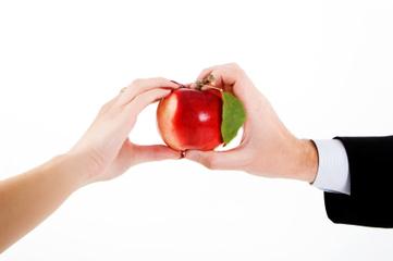 Establishing a Sensible Sales Process: Low-hanging Sales Improvement Fruit | Sales Process | Scoop.it