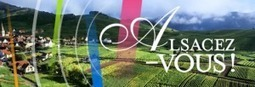 Bons chiffres pour les vendanges en Alsace | Autour du vin | Scoop.it