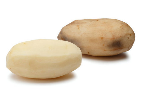 U.S.D.A. Approves Modified Potato. Next Up: French Fry Fans. | Modern Agricultural Biotechnology | Scoop.it