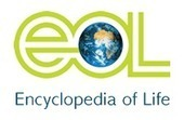 Encyclopedia of Life - Animals - Plants - Pictures & Information | From Complexity to Wisdom | Scoop.it