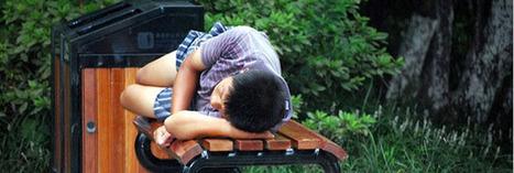 La sieste améliore nos capacités d'apprentissage | Actus Bien-être - Santé | Scoop.it