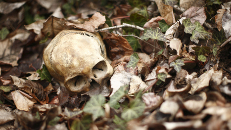 The 10 Worst Ways to Die in the Wild | Philosophy, Thoughts and Society | Scoop.it