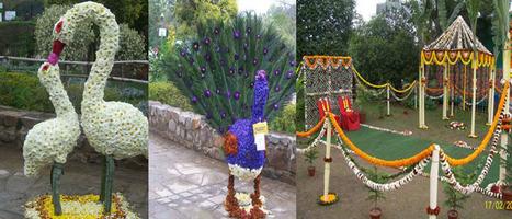Garden of Five senses | Delhi Ayurveda Packages | Scoop.it