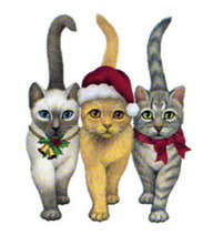 The Christmas Cat Shop | Ask The Cat Doctor | Scoop.it