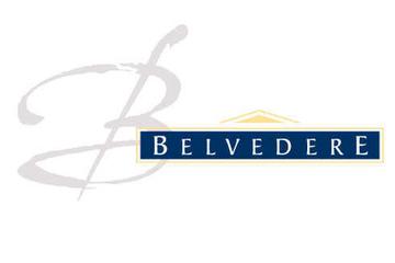 Belvédère group to sell assets, streamline portfolio in rescue plan | Autour du vin | Scoop.it