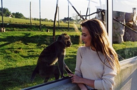 Sauvés des laboratoires ! | animals rights and protection | Scoop.it