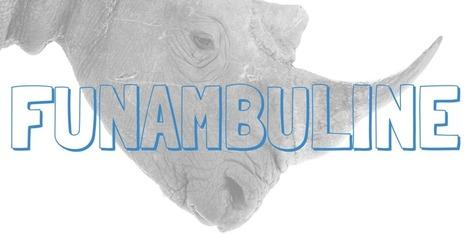 Nigella | funambul(in)e: Nigella | Trucs et machins | Scoop.it