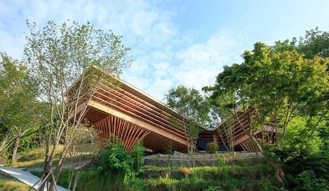 39 maison bois contemporaine 39 in construire tendance page for Architecture japonaise contemporaine