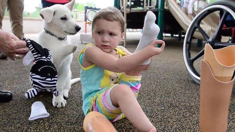 Incredible Little Girl with No Feet Becomes Best Friends with Paw-Less Puppy | Le It e Amo ✪ | Scoop.it