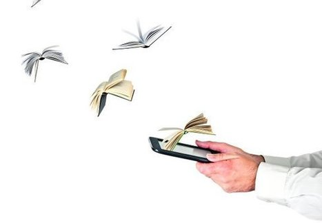 El precio del ebook es la clave del éxito | Litteris | Scoop.it