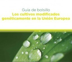 Guia de Bolsillo Los cultivos modificados genéticamente en la Unión Europea | Transgénicos | All About Food | Scoop.it