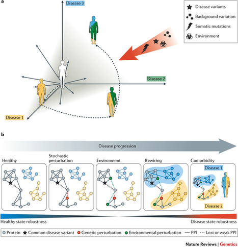 Network biology concepts in complex disease comorbidities : Nature Reviews Genetics : Nature Research | How microbes emerge | Scoop.it
