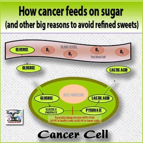 HOW CANCER FEEDS ON SUGAR | Studies, Science and Information | Scoop.it