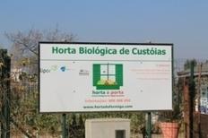 L'innovation sociale au Portugal | Coopération, libre et innovation sociale ouverte | Scoop.it