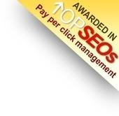 Custom Web Application Development | Offshore IT Services | Scoop.it