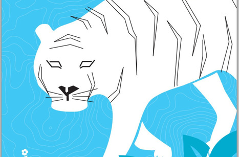 Tiger Conservation in Nepal Infographic | Adventure Travel at its Best! | Scoop.it