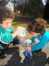 bird feeders for sale, glass bird feeders, large bird feeders, squirrel proof bird feede | Leona47oc | Scoop.it