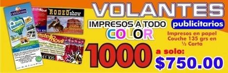 img1_volantes-publicitarios-a-color_0.jpg (700x223 pixels) | Agencia de Publicidad | Scoop.it