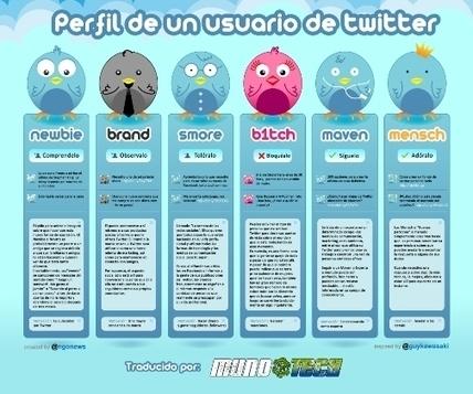 Perfil de un usuario de Twitter (Infografia)   Recursos para twitter   Scoop.it