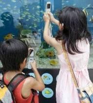 El 65% de los niños españoles entre 8 y 12 años tiene móvil - elEconomista.es | Pizarra Digital | Scoop.it