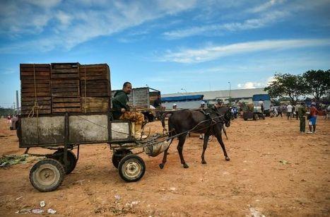 Cuba: priorité «stratégique» du régime, l'agriculture ne décolle pas | Questions de développement ... | Scoop.it
