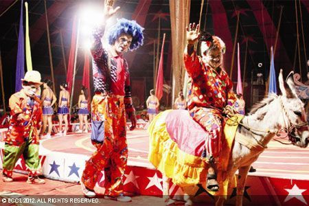 Mumbai calls for abolition of animals in circus - Times of India | Animals R Us | Scoop.it