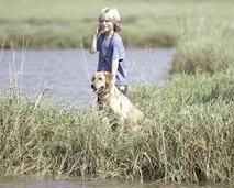 aubreyjdionisio's Journal Entry: The most recent type of dog training salt lake city | Dog training utah | Scoop.it