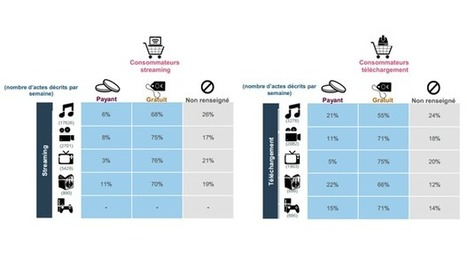 Etude de la consommation de biens et services culturels dématérialisés en France | Le journal de bord de la dématérialisation | Scoop.it
