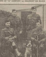 Man's best friend: WWI records show the valuable part dogs played in war effort - Daily Star | History Bites | Scoop.it