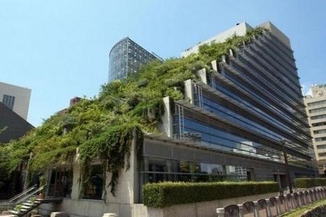 """Agorà Magazine - La bio architettura si orienta bene nei riguardi delle soluzioni """"verdi   Architecture & Gardens   Scoop.it"""