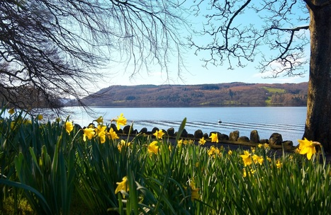 Why is the Lake District so popular? | Great Blog Posts | Scoop.it