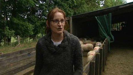 Une femme à la tête de la Fédération nationale ovine - France 3 Auvergne | Le Fil @gricole | Scoop.it
