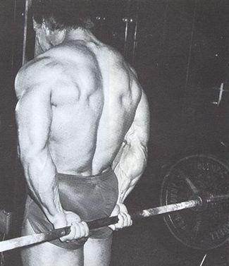 กล้ามแขน วิธีเล่นกล้ามแขนให้ได้ผล กล้ามแขนสวย เพิ่มกล้ามแขน | เล่นกล้าม ฟิตเนส เล่นเวท เพาะกายไทย | Scoop.it