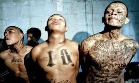 Revealed: An Army of Over 100,000 Illegal Alien Gang Members in Texas | Soceity & Culture | Scoop.it