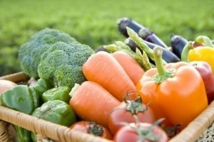 What the study forgot to mention: Organic food can save the world from devastating climate change | efficient gardening | Scoop.it