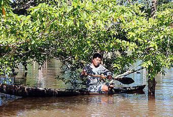 Protegerán conocimientos tradicionales asociados a biodiversidad | Paisaje Nativo | Scoop.it