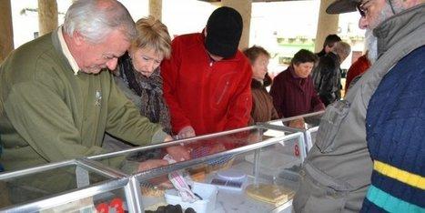 Un marché aux truffes frileux | Agriculture en Dordogne | Scoop.it