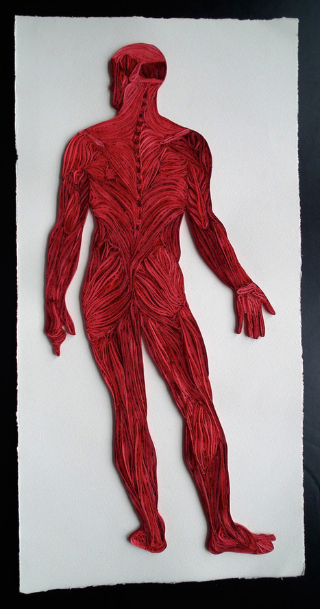 Quilled Paper Anatomy by Sarah Yakawonis   Colossal   Art et Corps interne   Scoop.it