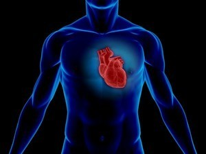 CoQ10 can boost heart function in heart failure patients: Meta-analysis | Longevity science | Scoop.it