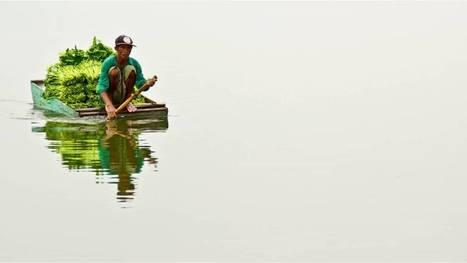 Las espectaculares fotos ganadoras del Sony World Photography Awards | Mi cofre del tesoro | Scoop.it