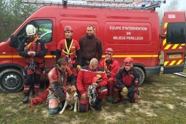 Un chien tombe dans une sape sur un site militaire de la Marne | CaniCatNews-actualité | Scoop.it