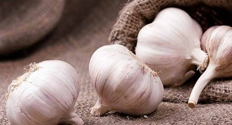 Alternative Medicine – Vitality.news | FOOD? HEALTH? DISEASE? NATURAL CURES??? | Scoop.it