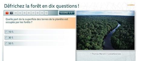 Quiz : connaissez-vous la forêt ? | Sites éducatifs | Scoop.it