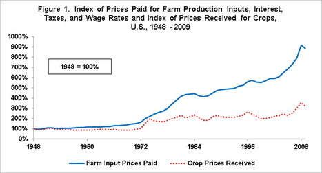 Crop prices, input prices: Which one has increased more? | New agricultural trends | Scoop.it