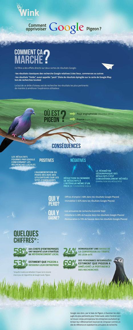 Infographie : Comment apprivoiser Google Pigeon ? | Entrepreneurs du Web | Scoop.it
