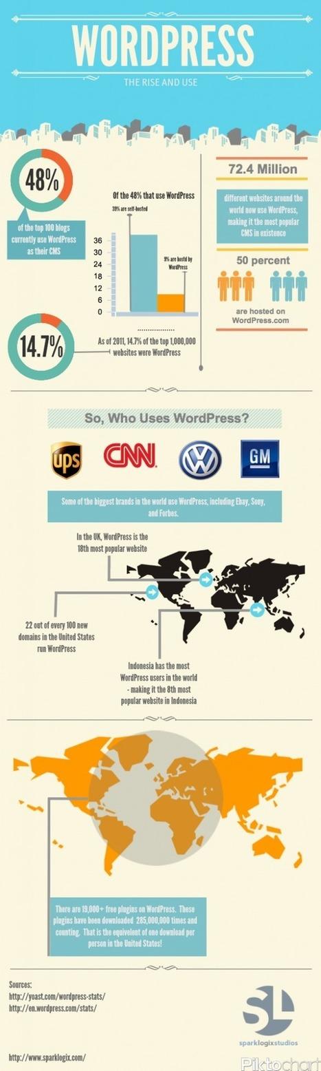 Wordpress – Infographic | Social and digital network | Scoop.it