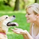 What Your Dog Says About Your Personality | Animal Health | Scoop.it